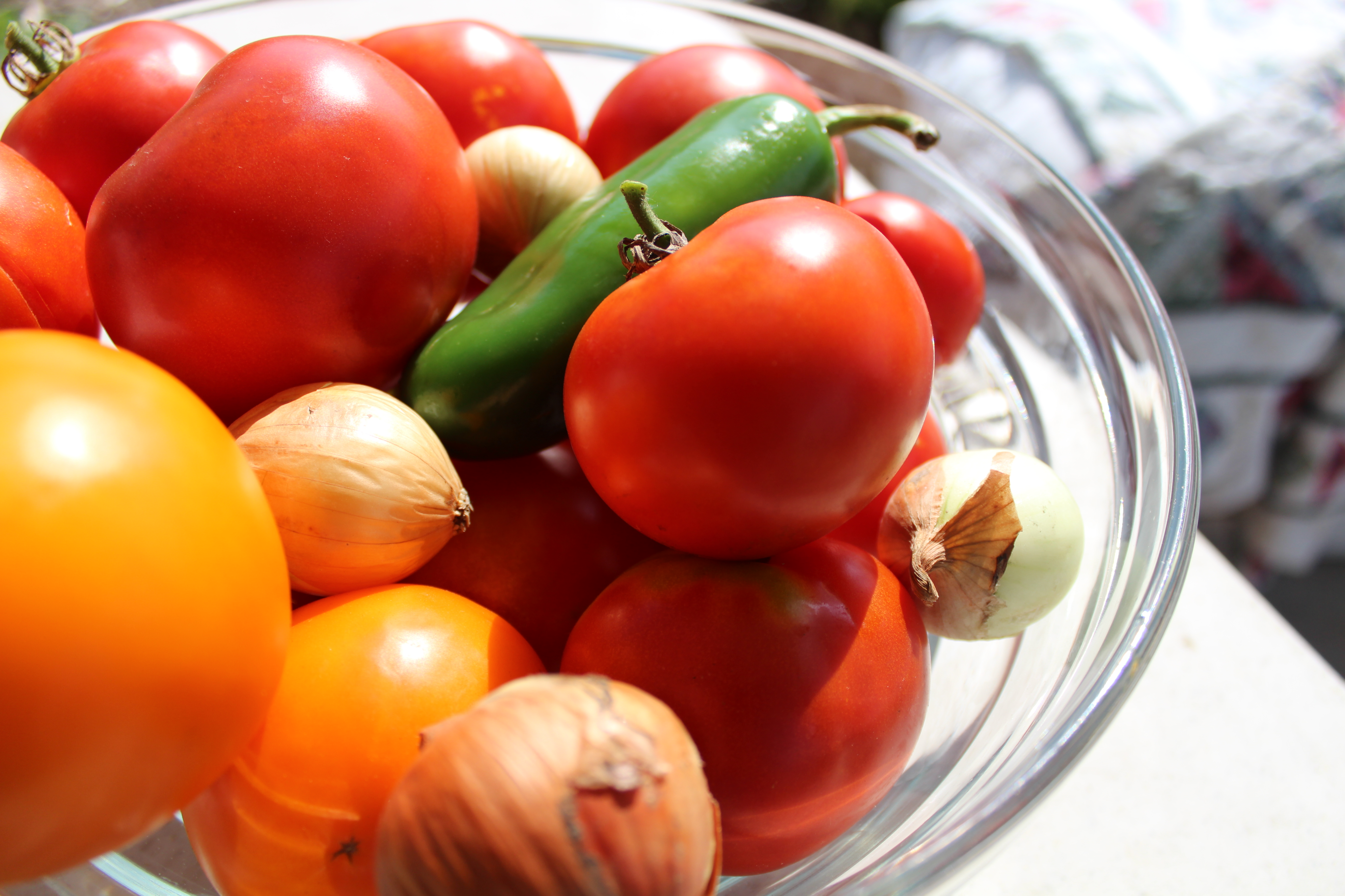 Summer Tomatos (2)
