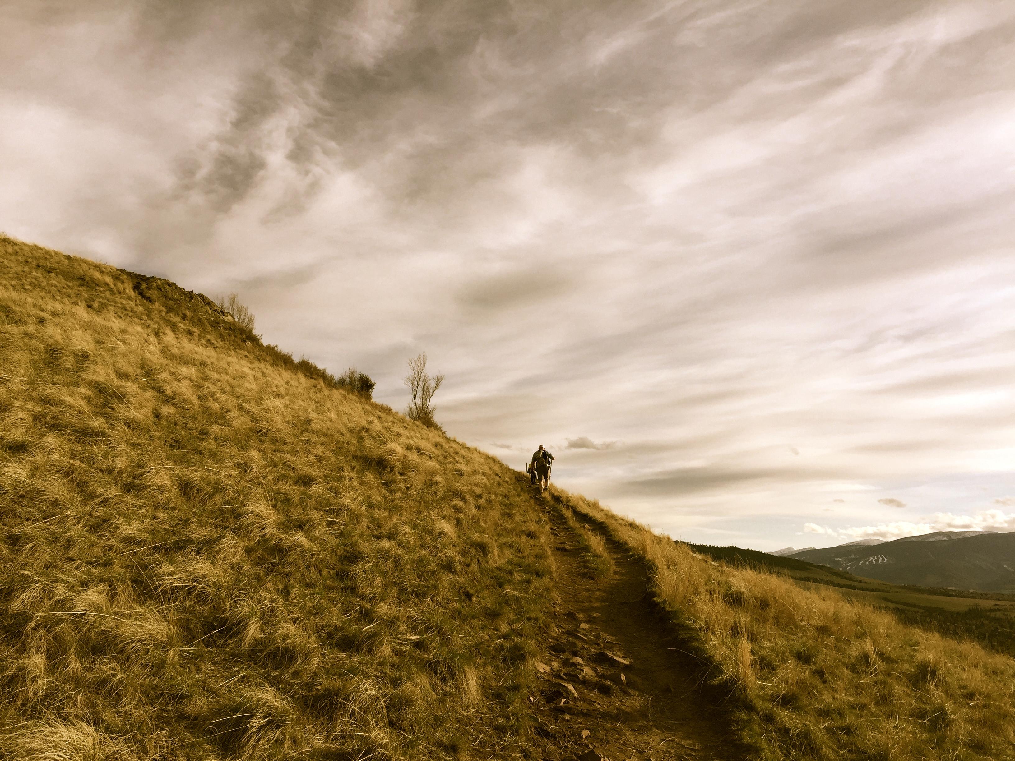 Jesus, path, follow